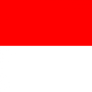 Group logo of Indonesia